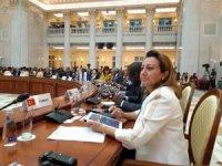 Türkiye'nin Dünya Turizm Örgütü Yürütme Konseyi üyeliği başladı