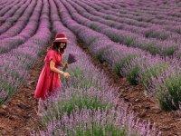 Burdur'un fotoğrafa yansıyan güzellikleri ödüllendirildi