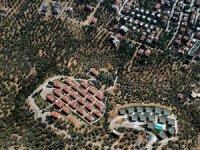 Kaz Dağları'nda villa yapımı için 2.5 milyon zeytin ağacı kesildi