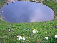 Dipsiz Göl'ün define için yok edilmesi Meclis gündeminde