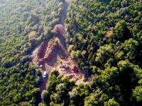 Adalar Kaymakamlığı: Hayvan giriş çıkışı durduruldu