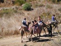 2019'da Side'de 4 bin 600 turist deve turuna çıktı