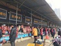 Ölümcül korona virüsünün yayıldığı Wuhan hayvan pazarı