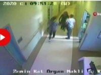 Sahte belgelerle organ nakli yapan çeteye operasyon