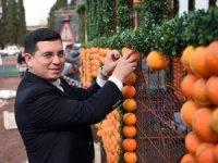 Kepez Belediyesi okullar açılınca öğrencilere portakal dağıtacak