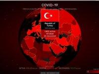 Dünyanın otomatik güncellenen koronavirüs haritası