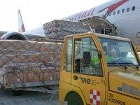 """Viyana Havalimanı: Virüs anahtarı """"bilgi, esneklik ve iyi bir ekip"""""""