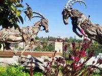 Tarihi Kaleiçi çiçeklerle süslendi