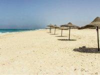 MÜSİAD ve İHATO'DAN Covıd-19 Sonrası İç Turizm Raporu