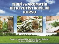 Antalya'da arıcılık ve tıbbi aromatik bitkiler kursu açılıyor