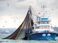 Av sezonu başladı, balıkçılar denize açıldı