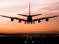 Havayolu şirketi ismini bulan bir yıl bedava uçacak