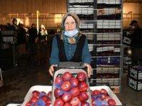 Elma işçisi 78 yaşındaki Şerife Aytar örnek olmalı