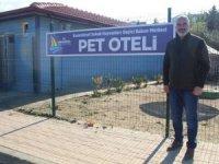Karamürsel'de sokak hayvanlarına deniz manzaralı otel