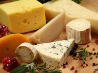 """""""Kars Peynir Rotası Projesi"""" Kars'ı dünyaya tanıtacak"""