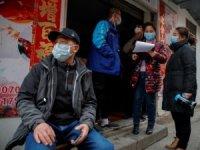 Dünya Sağlık Örgütü, Çin'de COVID-19'un kökenini araştıracak
