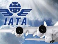 IATA: Havayolu yolcu trafiği % 8.1 arttı