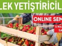 MATSO:Manavgat'ta tarım yatırım yapılabilir sektör oldu