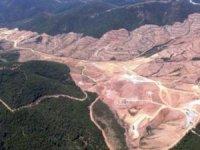 Kaz Dağları'nda doğayı katleden şirket1 milyar dolar tazminat istedi