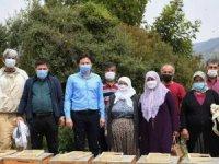 Demre Belediyesi 16 kadına 80 arı kovanı verdi