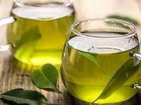 Trabzon'unorganik yeşil çayına dünyadan talep
