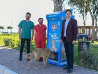 Demre'de sokak hayvanları için mama otomatı kuruldu