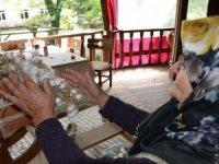 Alanya'da ipek böcekçiliği yeniden canlandırılıyor