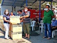 Eko turizmi ve arı popülasyonunu korumak için kovan desteği