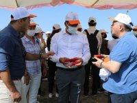 Gönüllük Hasadı Projesi ile gıda israf önüne geçiliyor
