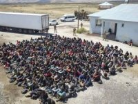 Van'da TIR'ın dorsesinde 300 kaçak göçmen yakalandı