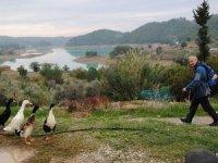 Antalya'da ormanlara giriş ve çıkışlar 1 Eylül'e kadar yasaklandı