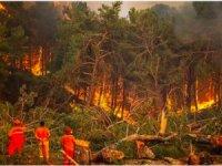 Manavgat yangınında alevler Eynif Ovası dağlarona ulaştı