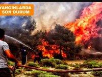 Yangınlarda son durumu Bakan Pakdemirli açıkladı