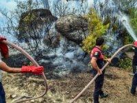 Yatağan'da yangınla mücadelede görevliler ile gönüllüler çalışıyor