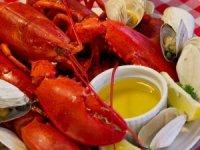 Deniz lezzetleriOcean Garden'dasanata dönüşüyor