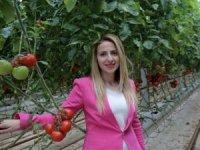 Hasan Bey Çiftliği 100 milyon dolarlık otel yatırımı yapıyor!