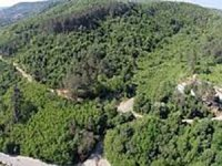 Beykoz Ormanları'nda 553 villaya yapım izni