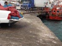 2,5 ton kum midyesi ve 400 kilo deniz patlıcanı ele geçirildi