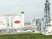 Torku'nun sahibi Anadolu Birlik Holdingbankalarla görüşüyor