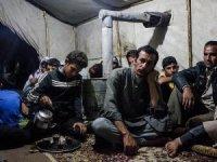 Suriyeli mevsimlik işçi çalışma izninden muafolacak.
