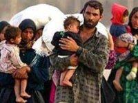 Türkiye'de 3 milyon 644 bin 342 Suriyeli bulunuyor
