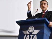 IATA: 2108'de uçak kazalarında 523  kişi öldü