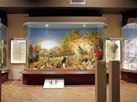 Meteora Doğa Tarihi Müzesi, 2019 turizm ödülünü kazandı.