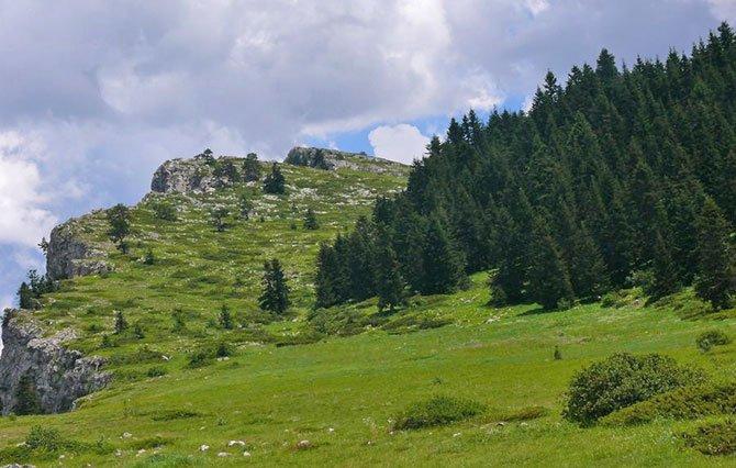 -aynur-tekin-atekingazeteduvar.com.tr-001.jpg