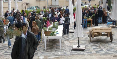 alacati-ot-festivali-5.jpg