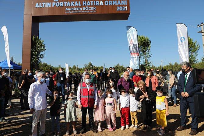 altin-portakal-hatira-ormani-002.jpg
