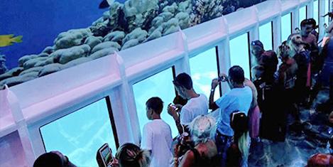 denizalti-safari13.jpg