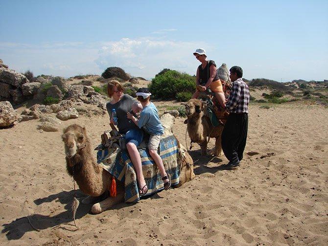 evde-bekleyen-develer,--001.jpg