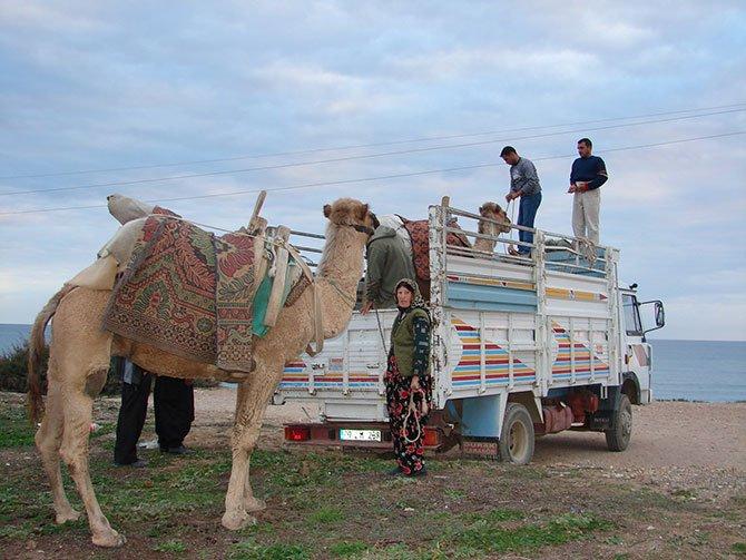 evde-bekleyen-develer,--004.jpg