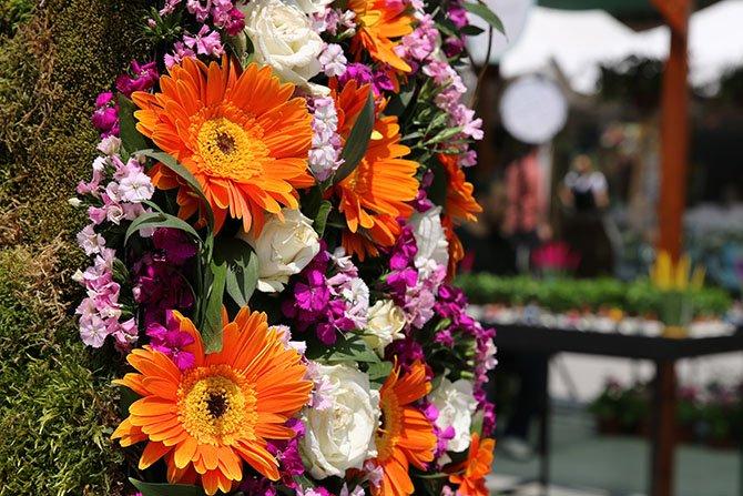 floralfest,-wedding-.JPG